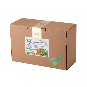 Мыльные орехи ® S.Mukorossi для стирки 1 кг