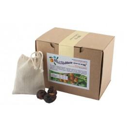 Мыльные орехи ® S.Mukorossi для стирки 500 г, , 31.80 руб., Мыльные орехи ® S.Mukorossi для стирки 500 г, Мыльные орехи, Zero waste = Ноль Отходов