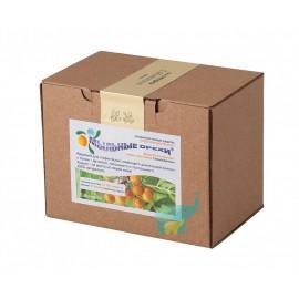 Мыльные орехи ® S.Mukorossi для стирки 500 г, , 29.90 руб., Мыльные орехи ® S.Mukorossi для стирки 500 г, Мыльные орехи, Zero waste = Ноль Отходов