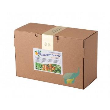Мыльные орехи ® Trifoliatus для мытья тела и волос, 1 кг