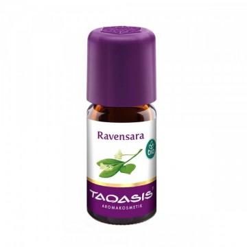 Эфирное масло Равенсара, 5 мл Taoasis BIO